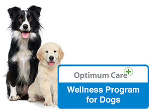 Optimum Care Wellness Program for Dogs badge