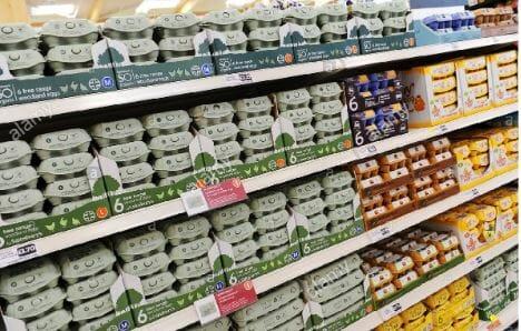 Egg cartons on grocery shelves